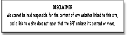 DISCLAIMER